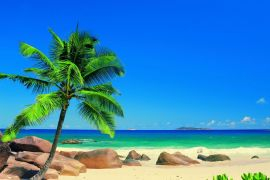 Rejsy po Karaibach